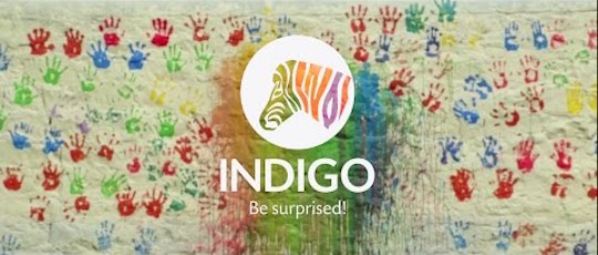 Indigo Paints IPO allotment status